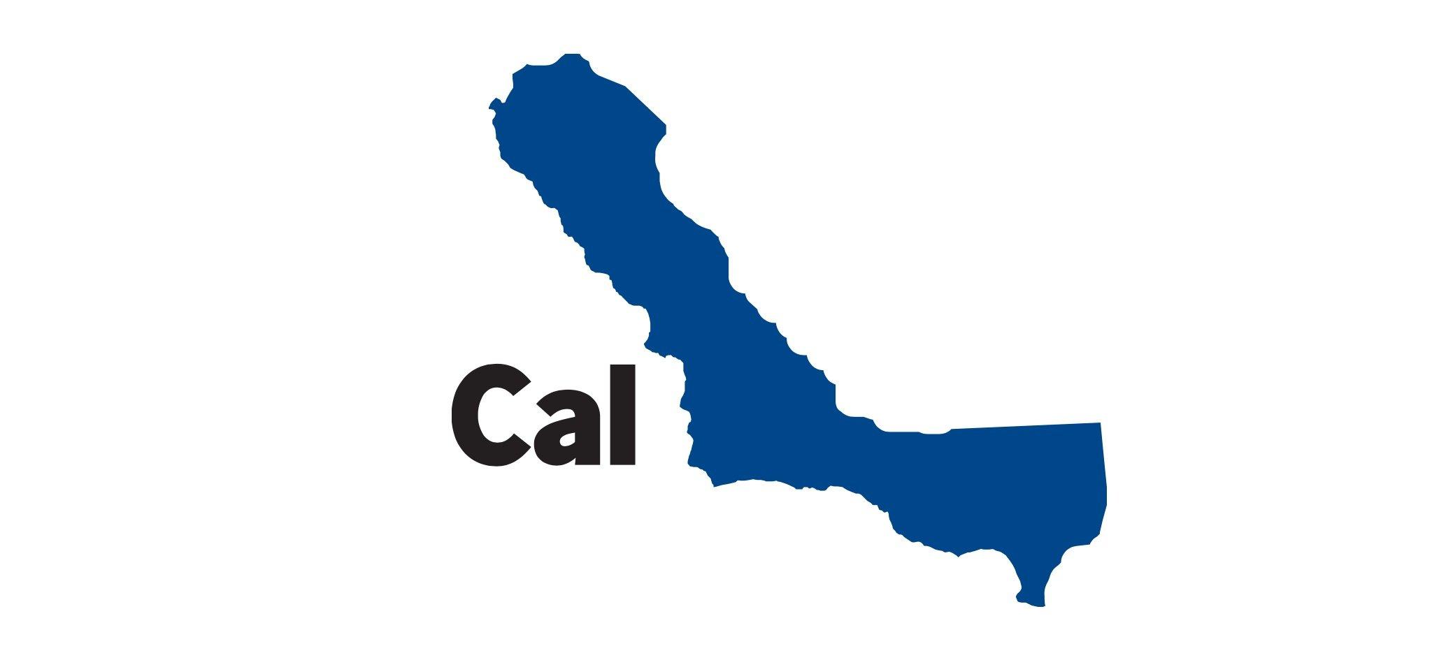 референдум в Калифорнии - Cal